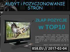 Miniaturka domeny 10top.com.pl