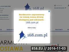 Miniaturka domeny 168.pl