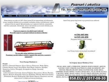 Zrzut strony Naprawa lodówek Poznań