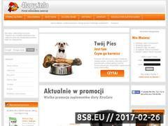 Miniaturka domeny 4lapy.info