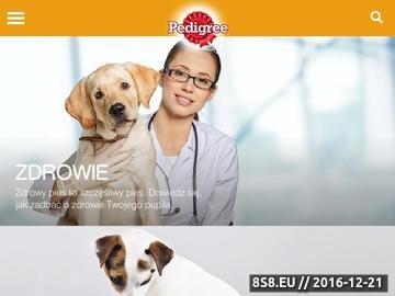 Zrzut strony Blog zawierający cenne informacje na temat psów