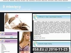 Miniaturka domeny www.9miesiecy.eu