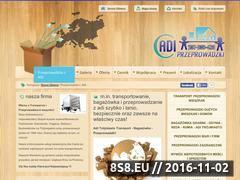 Miniaturka domeny www.adiprzeprowadzki.pl