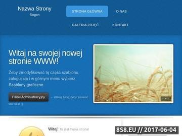 Zrzut strony Domeny internetowe