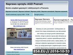 Miniaturka domeny www.agd-poznan.pl
