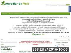 Miniaturka domeny agrobiznespark.pl