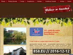 Miniaturka domeny www.agroliniewo.bizn.pl
