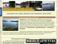 Miniaturka domeny agroturystyka.kaszuby.org