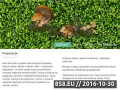 Miniaturka domeny www.agrzybica.pl