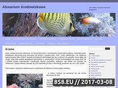 Miniaturka domeny www.akwa.aip.pl