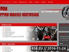 Miniaturka domeny www.alternatory-rozruszniki.eu