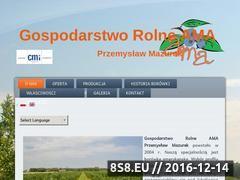 Miniaturka domeny www.ama.agro.pl