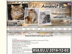 Miniaturka domeny www.amavi-sib.com
