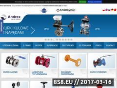 Miniaturka domeny www.andrex.com.pl