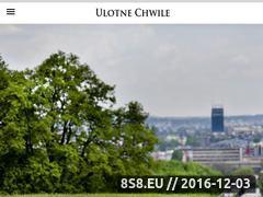 Miniaturka domeny www.andrzejszyroki.pl