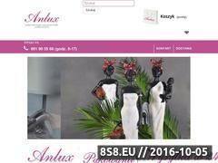 Miniaturka domeny www.anluxsklep.pl