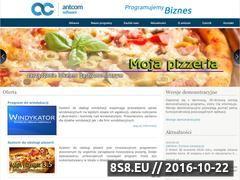 Miniaturka domeny www.antcom.pl