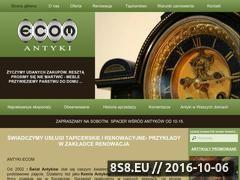 Miniaturka domeny www.antyki-ecom.pl