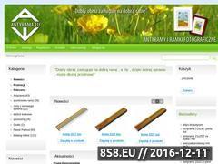 Miniaturka domeny www.antyrama.eu