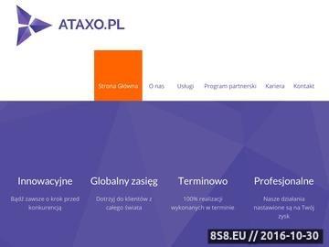 Zrzut strony Pozycjonowanie stron Ataxo