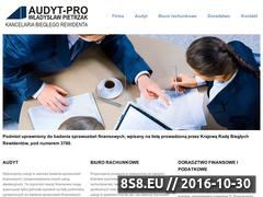 Miniaturka domeny www.audyt-pro.pl