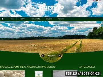 Zrzut strony Aurepio