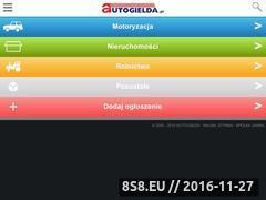 Miniaturka domeny www.autogielda.pl