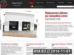 Miniaturka domeny autoserwisptasznik.pl