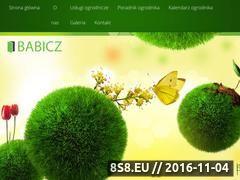 Miniaturka domeny www.babicz-ogrody.pl