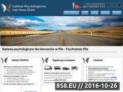 Miniaturka domeny badaniekierowcy.pl