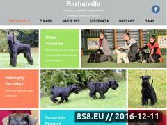 Miniaturka domeny barbabella.pl