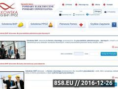 Miniaturka domeny www.bhp-sulkowski.pl
