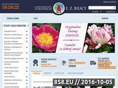Miniaturka domeny www.bilscy.info