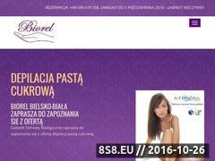 Miniaturka domeny biorel.pl