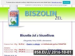Miniaturka domeny biszolin.pl