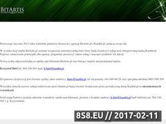 Miniaturka domeny www.bitartis.pl
