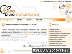 Miniaturka domeny www.biuro-euro.pl