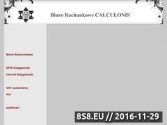 Miniaturka domeny www.biurorachunkowe-calculonis.pl