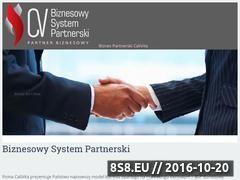 Miniaturka domeny www.biznes-partnerski.pl