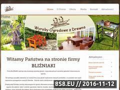 Miniaturka domeny www.blizniaki-producent.pl