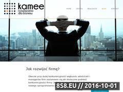 Miniaturka domeny blog.kamee.pl