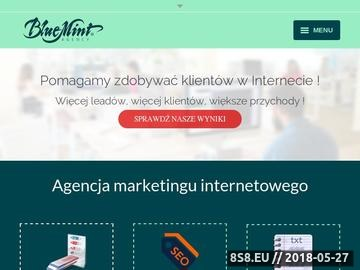 Zrzut strony Agencja digital marketing