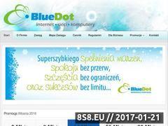 Miniaturka domeny bluedot.pl