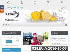 Miniaturka domeny bluewater24.pl