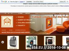 Miniaturka domeny www.bmpartner.pl