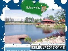 Miniaturka domeny www.bobrowisko.com