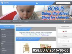 Miniaturka domeny bobus.com.pl