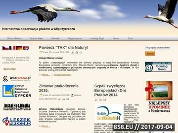 Zrzut strony Internetowa obserwacja ptaków w Międzyrzeczu