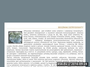 Zrzut strony Boczniaki - Gospodarstwo Uprawy Grzybów Michał Mytkowski -