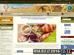 Miniaturka domeny www.bogutynmlyn.pl